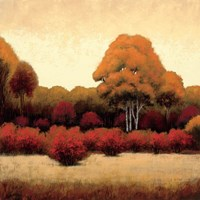 Autumn Forest I Fine Art Print