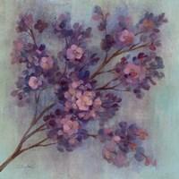 Twilight Cherry Blossoms I Framed Print