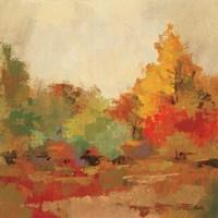 Fall Forest II Framed Print