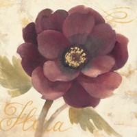 Abundant Floral I Framed Print
