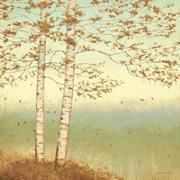 Golden Birch I with Blue Sky Fine Art Print