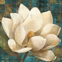 Magnolia Blossom Turquoise Fine Art Print