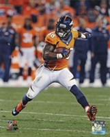 Demaryius Thomas 2013 catching the ball Fine Art Print