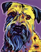 Terry Fine Art Print
