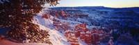 Snow in Bryce Canyon National Park, Utah, USA Fine Art Print