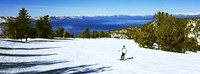 Tourist skiing in a ski resort, Heavenly Mountain Resort, Lake Tahoe, California-Nevada Border, USA Fine Art Print