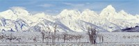 Grand Teton Range in winter, Wyoming, USA Fine Art Print