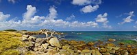 Rocks at the coast, Aruba Fine Art Print