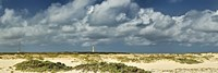Clouds over the beach with California Lighthouse in the background, Aruba Fine Art Print
