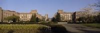 Trees in the lawn of a university, University of Washington, Seattle, King County, Washington State, USA Fine Art Print
