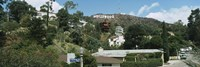 Low angle view of a hill, Hollywood Hills, City of Los Angeles, California, USA Fine Art Print