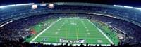 Philadelphia Eagles NFL Football Veterans Stadium Philadelphia PA Fine Art Print