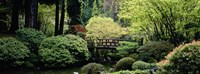 Panoramic view of a garden, Japanese Garden, Washington Park, Portland, Oregon Fine Art Print