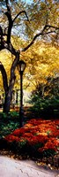 Lamppost in a park, Central Park, Manhattan, New York City, New York, USA Fine Art Print