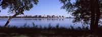 Lake Monona and Madison, Wisconsin Through the Trees Fine Art Print
