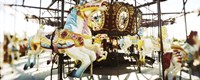 Close-up of carousel horses, Coney Island, Brooklyn, New York City, New York State, USA Fine Art Print