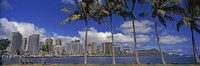 Skyscrapers at the waterfront, Honolulu, Hawaii Fine Art Print