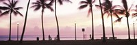 Palm trees on the beach, Waikiki, Honolulu, Oahu, Hawaii Fine Art Print