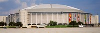 Baseball stadium, Houston Astrodome, Houston, Texas, USA Fine Art Print