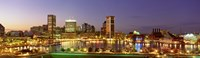 USA, Maryland, Baltimore, City at night viewed from Federal Hill Park Fine Art Print