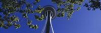 Space Needle Maple Trees Seattle Center Seattle WA USA Fine Art Print