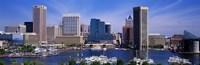 Inner Harbor Federal Hill Skyline Baltimore MD Fine Art Print