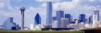 Dallas, Texas Skyline (day) Fine Art Print