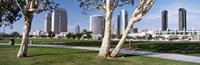 Embarcadero Marina Park, San Diego, California, USA Fine Art Print