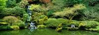 Waterfall in a garden, Japanese Garden, Washington Park, Portland, Oregon, USA Fine Art Print