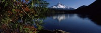 Reflection of a mountain in a lake, Mt Hood, Lost Lake, Mt. Hood National Forest, Hood River County, Oregon, USA Fine Art Print