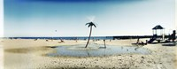 Palm tree sprinkler on the beach, Coney Island, Brooklyn, New York City, New York State, USA Fine Art Print