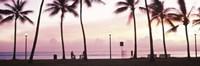 Palm trees on the beach, Waikiki, Honolulu, Oahu, Hawaii Fine Art Print