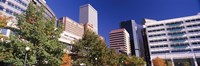 Low angle view of buildings in a city, Sheraton Downtown Denver Hotel, Denver, Colorado, USA Fine Art Print