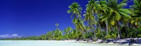 Beach With Palm Trees, Bora Bora, Tahiti Fine Art Print