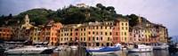 Harbor Houses Portofino Italy Fine Art Print