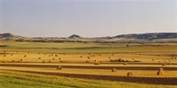 Slope country ND USA Fine Art Print