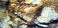 Rock Wasatch National Forest UT USA Fine Art Print