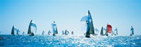 Sailboat Race, Key West Florida, USA Fine Art Print