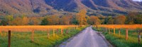 Road At Sundown, Cades Cove, Great Smoky Mountains National Park, Tennessee, USA Fine Art Print