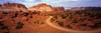 Desert Road, Utah, USA Fine Art Print