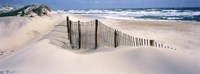 USA, North Carolina, Outer Banks Fine Art Print