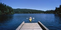 Rear view of a man on a kayak in a river, Orcas Island, Washington State, USA Fine Art Print