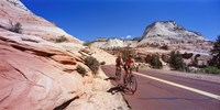 Two people cycling on the road, Zion National Park, Utah, USA Fine Art Print