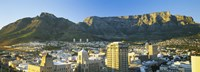 High angle view of a city, Cape Town, South Africa Fine Art Print
