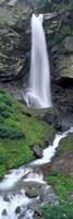 Waterfall in a forest, Sass Grund, Switzerland Fine Art Print