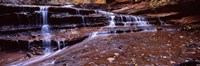 Stream flowing through rocks, North Creek, Utah Fine Art Print