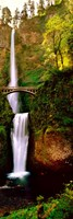 Footbridge in front of a waterfall, Multnomah Falls, Columbia River Gorge, Multnomah County, Oregon Framed Print