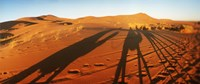 Shadows of camel riders in the desert at sunset, Sahara Desert, Morocco Fine Art Print