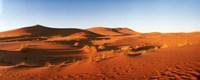 Desert at sunrise, Sahara Desert, Morocco Fine Art Print
