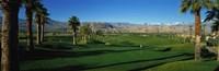 Golf Course, Desert Springs, California, USA Fine Art Print
